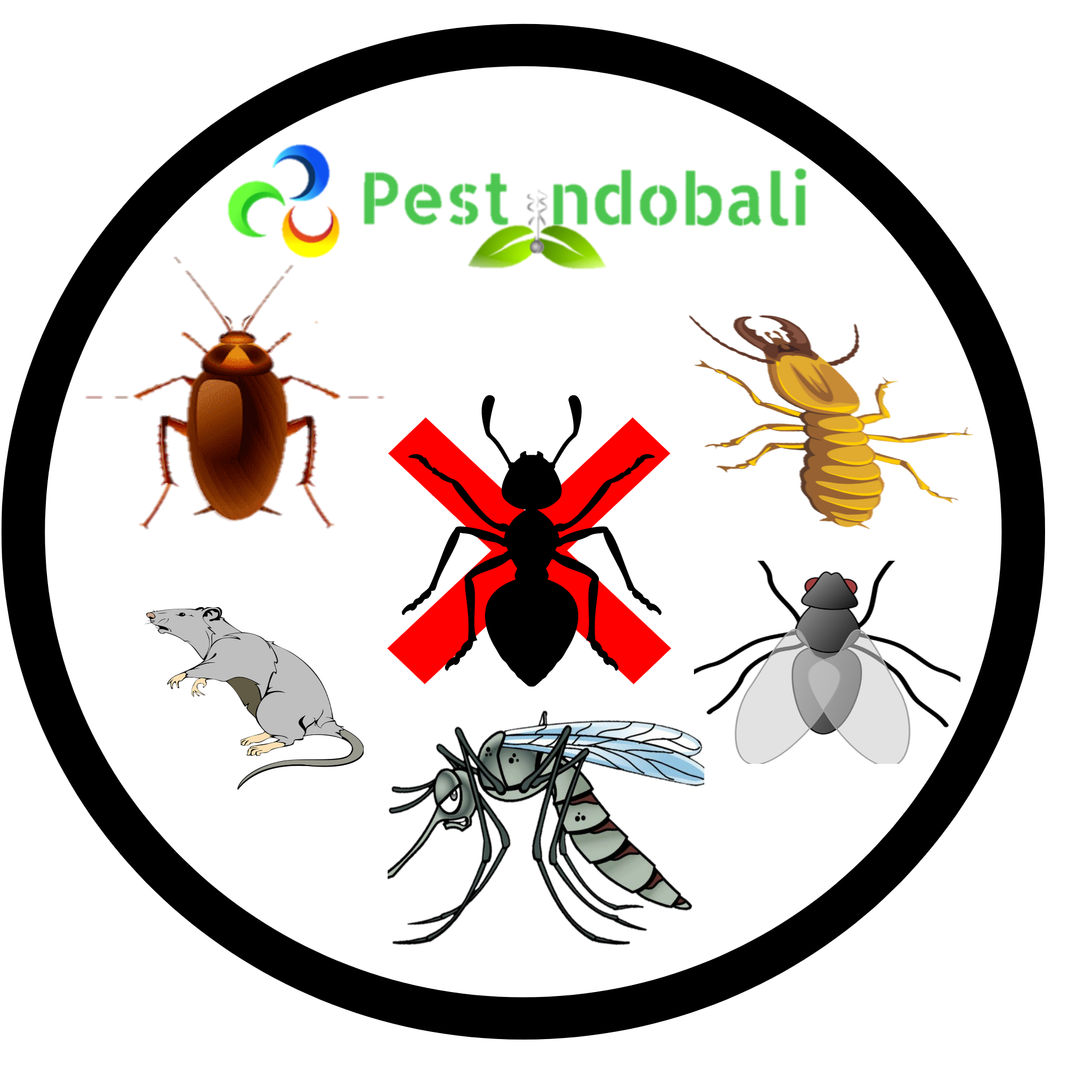 Pest control bali